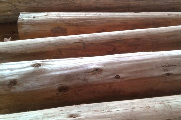 Timber Suppliers Colombo